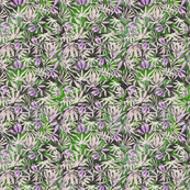 420 Lavender Leaves