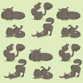 Roly-Poly Kitties (Mint)