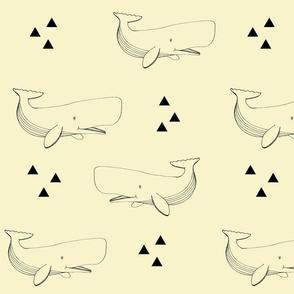 Sail away-Whale
