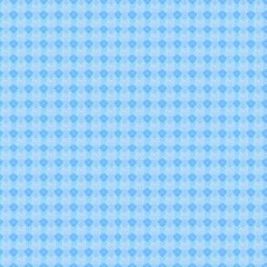 Zebra blue background