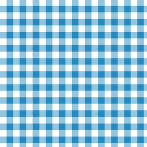 Willow Blue 2 Checks