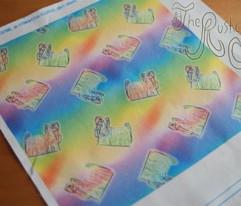 Rainbow tiny Yorkies A