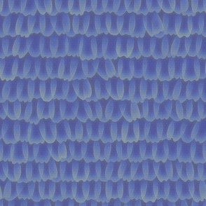 butterfly scales - Karner blue