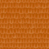 butterfly scales - Monarch orange