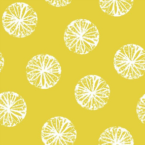 Sunburst - citron and white