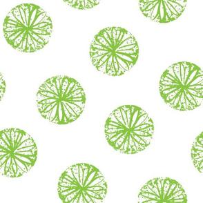 Sunburst - white and green