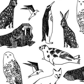 arctic animals // black and white animal print cute snowy owls arctic hare tundra polar bears winter animals