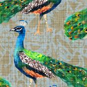 Rajah's Peacocks (in Agate)