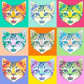 le chaton - multicolor background