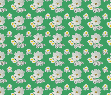 white_flowers_2