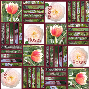 Roses_and_Tulips_library_books