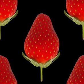 Strawberries on Black - Huge Strawberry photo repeating pattern