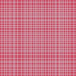 bikini grid