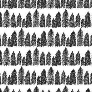Line of Evergreens