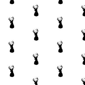 Reindeer for Tobias