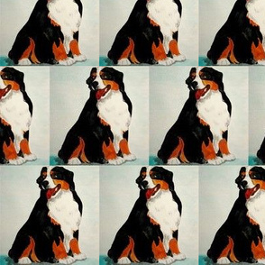 Bernese Mountain Dog - Different Repeat