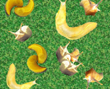 Slugfestfinal_thumb