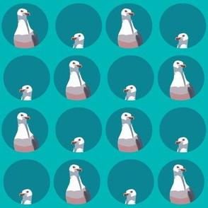 George Seagull