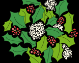 Rholly_tight_red_green_black_copy_thumb