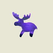 cestlaviv_moosePal_royalblksocksbeige