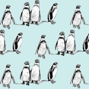 penguins pale blue