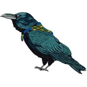 raven_swatch