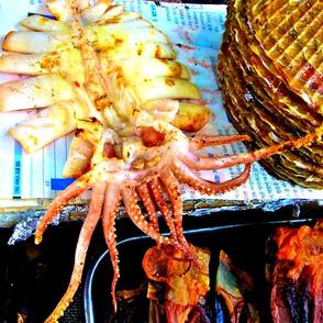 Fish_in_Korea-ed