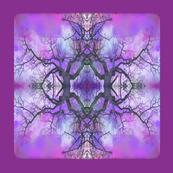 Garry_Oak_branching__out_-3__
