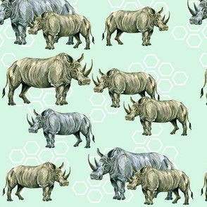 Rhinos and Hexagons