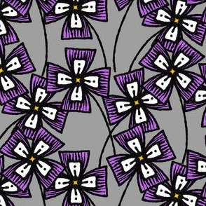 Boxy Clarkia Amoena - Violet