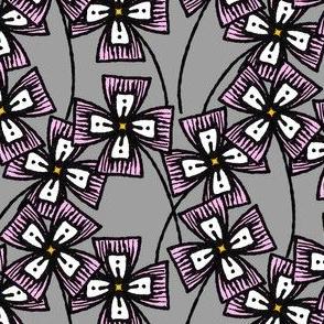 Boxy Clarkia Amoena - Pink
