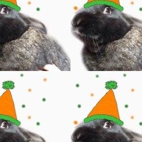 Birthday Bunny!