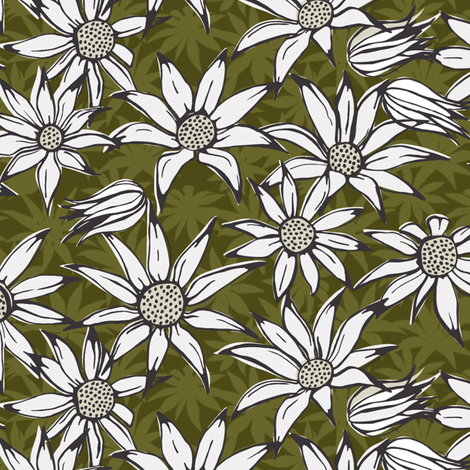 Flannel flowers (dark version)