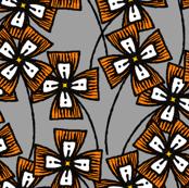 Boxy Clarkia Amoena - Orange (Small)