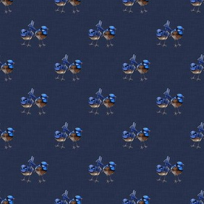 Two Blue Wrens on Denim