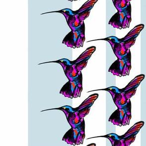 Hummingbird Stripes