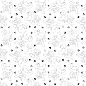 Trotting Bichon Frise and paw prints - white