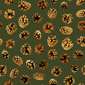 pine cones on pine green