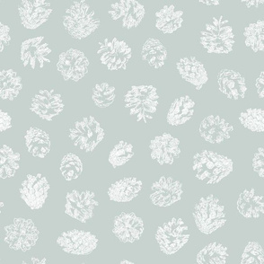 pine cones on ice grey