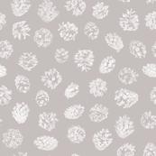 pine cones on winter grey