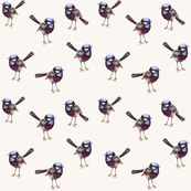 Antique Wrens_HALF_TONE_Royal Purple