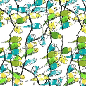 parakeets-spoonflower-seamless2
