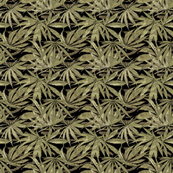 Canabis Leaf Olive
