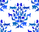 Rrcopy_cat_thumb