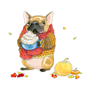 Pumpkin Spice French Bulldog