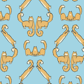 Fluffy cat damask