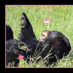 Black Bear Frolicking In Poppies Pan