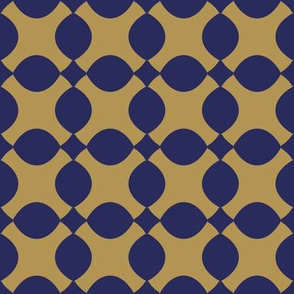 Lattice Navy
