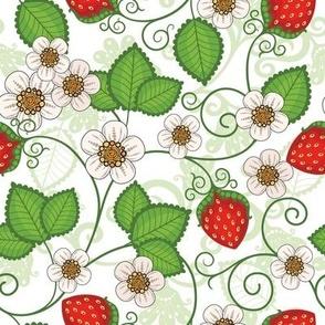 Strawberries - White