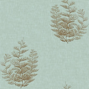 Fern Coral in Custom Colorization for Ramoth